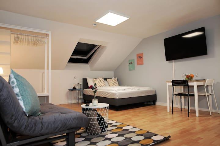 First Class Appartement ⋇Zentral ⋇Klinikum ⋇Uni