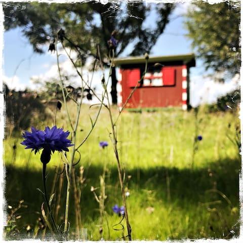 UniKate – Ferien im Artland
