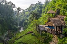 Haley, Airbnb On-Line Guest Review:  We loved our stay in the River Villa during our Honeymoon to Bali. It was a wonderful escape from the hustle and bustle of Ubud...The villa overlooks a beautiful waterfall, river, and valley...we highly recommend.