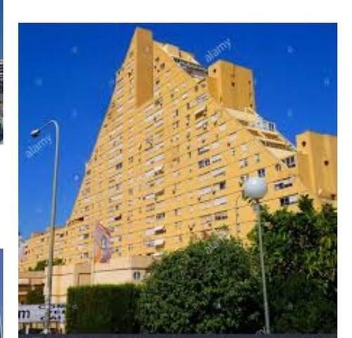 Alicante entdecken und lieben lernen!