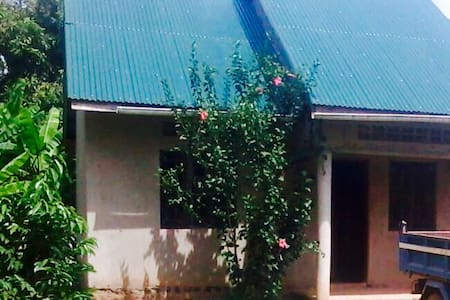 adventure house far from  city in forest setting - Kampala