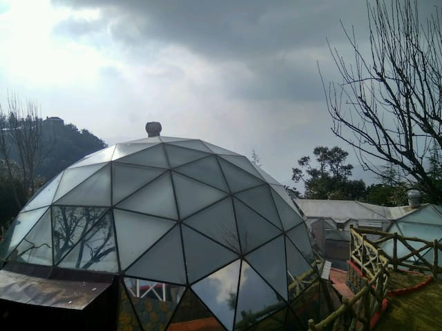Presidential Glass House Suite on Hill Top - Chail - Butikhotel