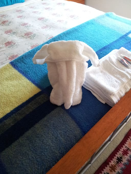 I sometimes make the elephant towel for my newly weds for fun.
