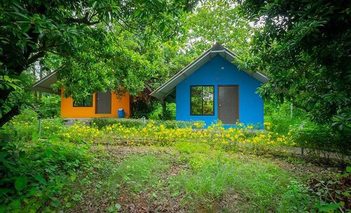 NatVenture Camp Magic Forest,Wada - Blue Tabin