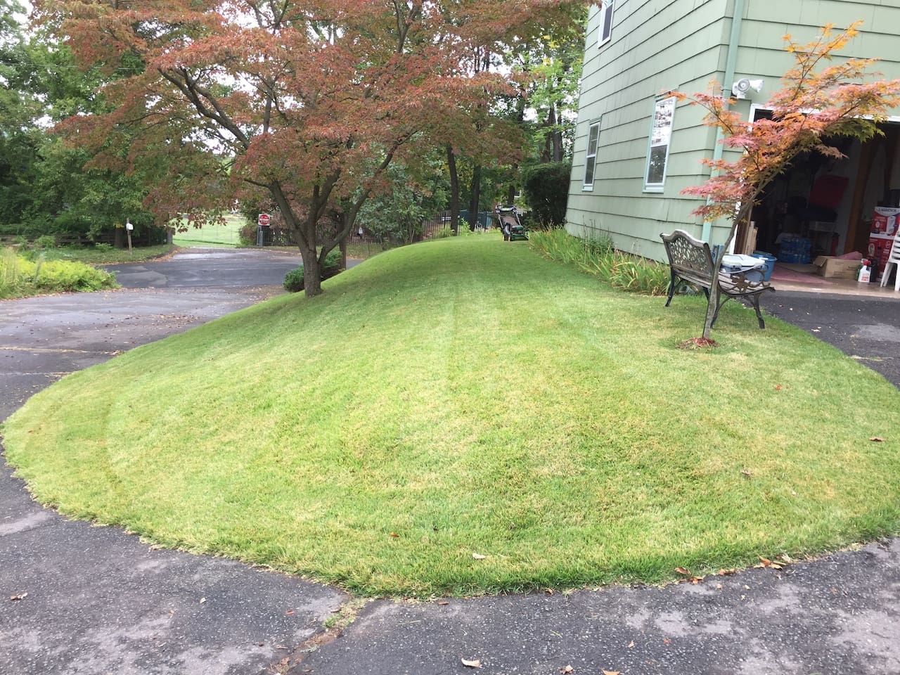 Manicured front yard