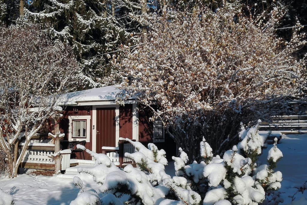 Cottage in the winter.