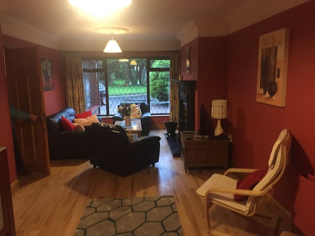 Large spacious house close to city centre - Galway - Maison