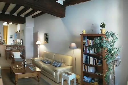 70² sqm / 2 br in historical center - Saumur - Apartemen