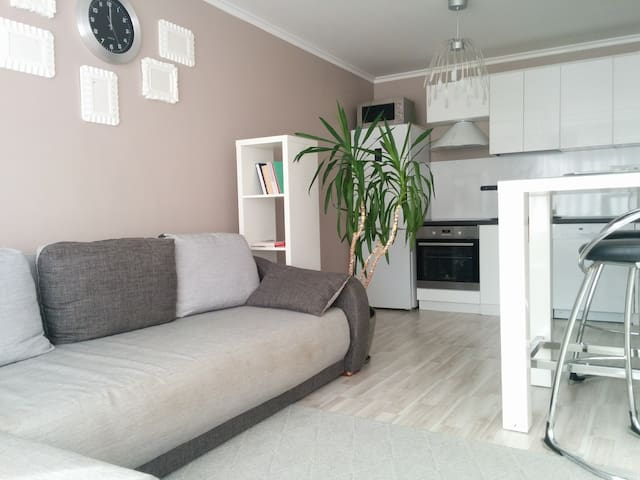 Cozy Tallinn apartment next to Pae & Kadriorg park - Tallinn - Byt