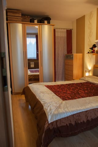 Cozy flat Gliwice walking distace from City center - Gliwice