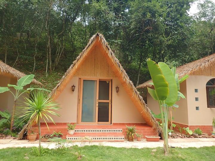 特色森林小屋