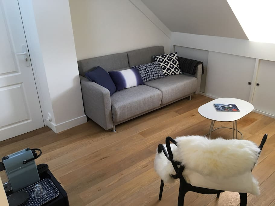 Cozy living room with fold out sofa bed for one extra guest