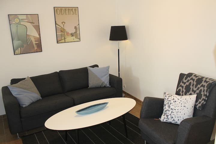 Five Star Apartment Odense City