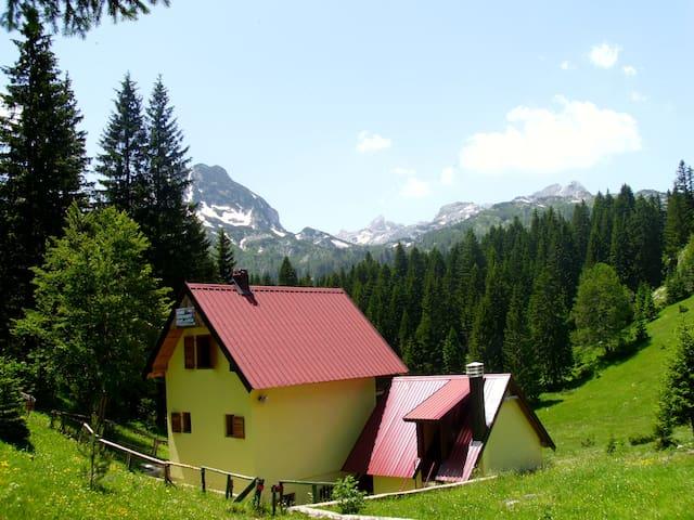 Charming mountain view apartment