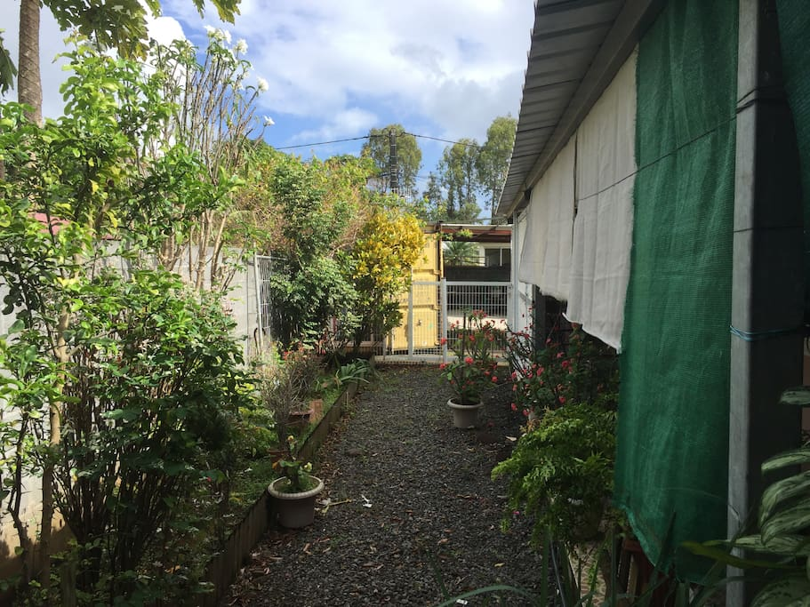 petite jardin