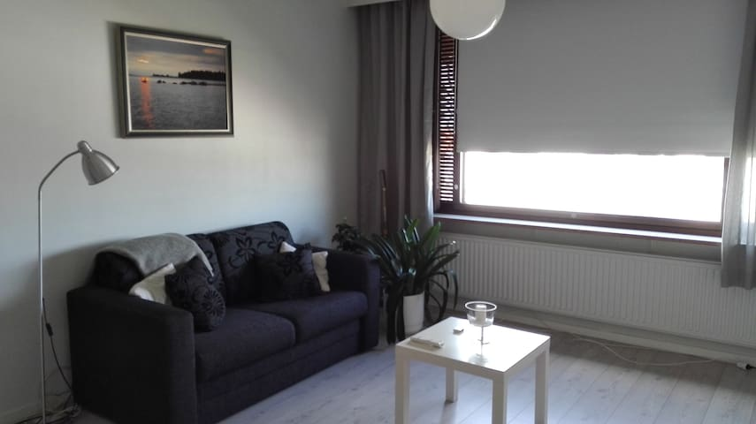 Oleskelu tilan vuodesohva - living room space with a sofa bed