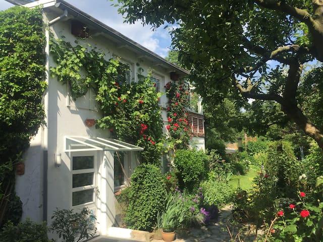 Gemütliches, frisch saniertes Gartenhaus - Hamburg - Wohnung