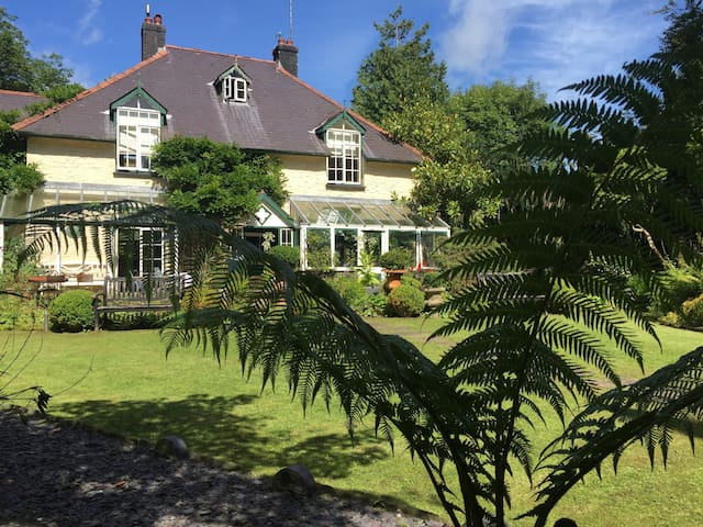 The front of the country house on a hot summers day with the ferns in full bloom