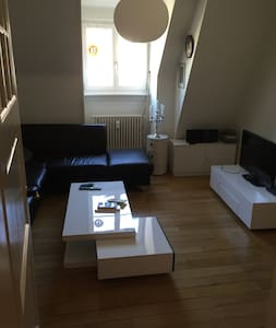 2 rooms for Baselworld, Art Basel - Basel