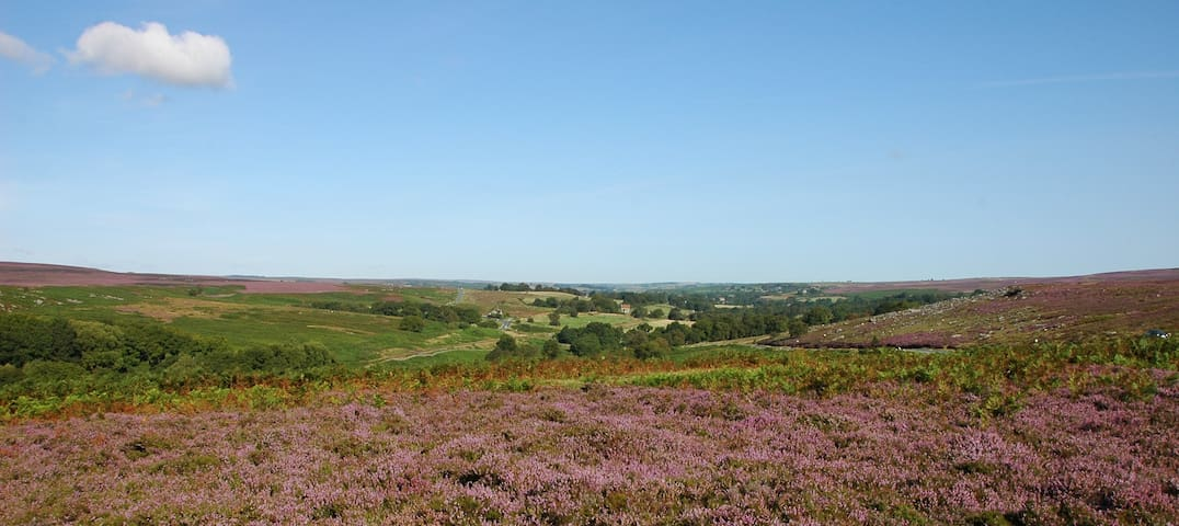 Moorholm - for peace and quiet in the moors - Goathland - Casa