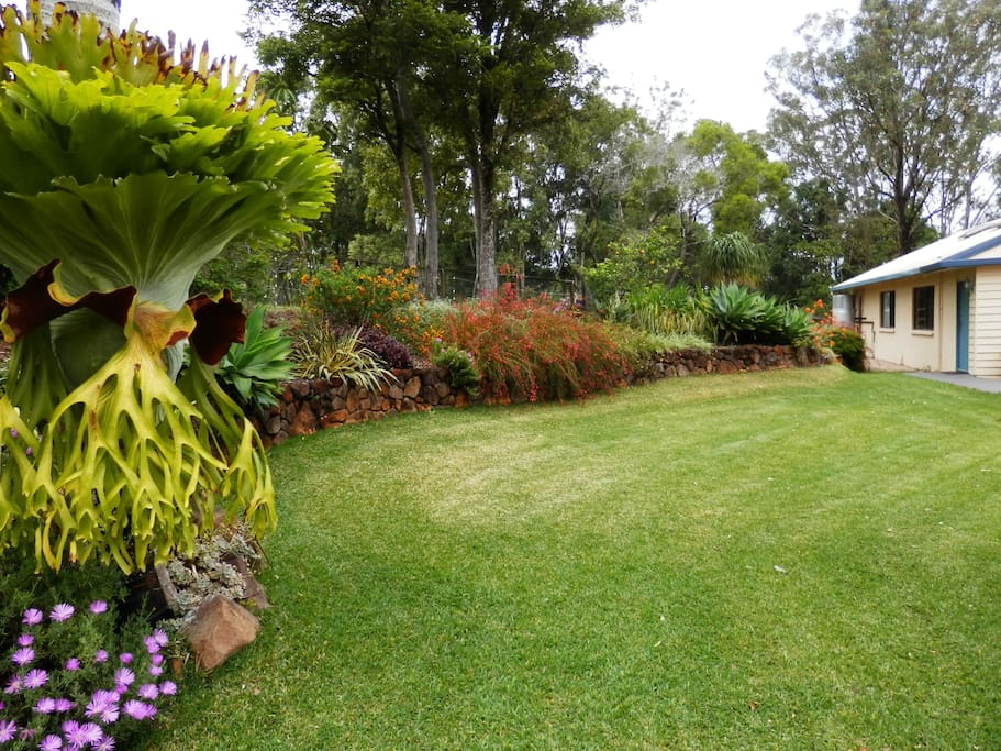 Garden leading you towards your Bedroom in the Accommodation Wing