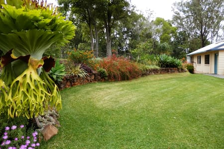 Obilo Lodge, panoramic views, peace in rainforest! - Mapleton - Outros