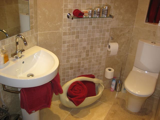Chatsworth ensuite room  - comprising of electric shower, sink and toilet.
