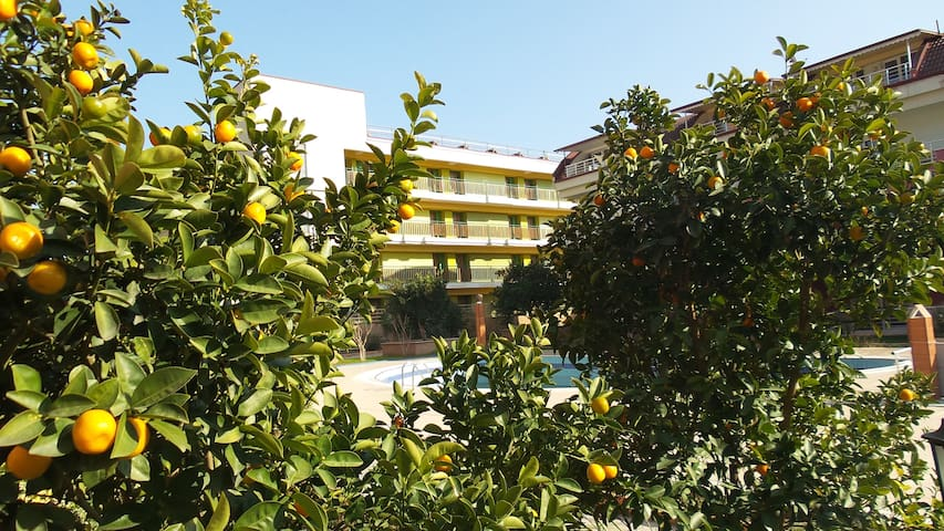 Friendly and comfortable Apartment with Wifi, AC - Kemer - Wohnung