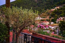 μπροστινή θέα χωρίου από το σπίτι