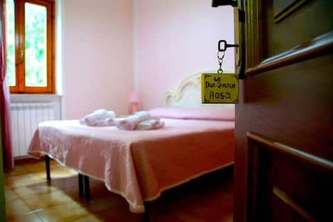 Agriturismo le due oaks: Pink room - double