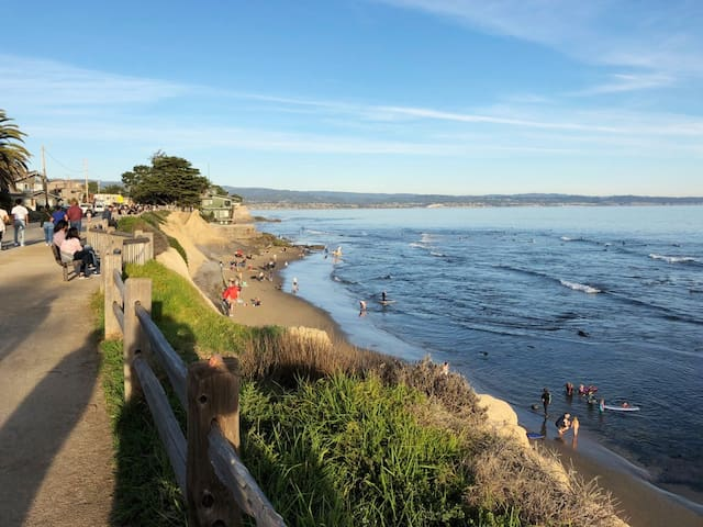 Pleasure Point Beach in Santa Cruz
