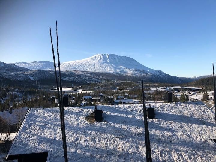 Ski in/out leilighet - Solsida 15, Gaustablikk
