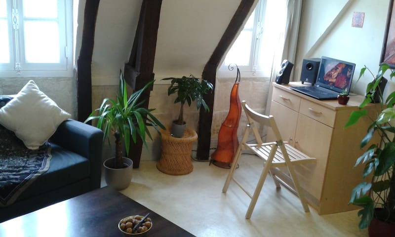 Joli petit appartement de centre ville - Caen - Apartamento