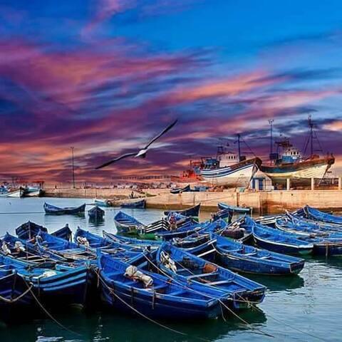 Day Trip - Essaouira