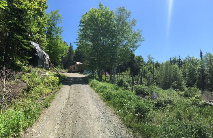 Vermont Mountain Homestead
