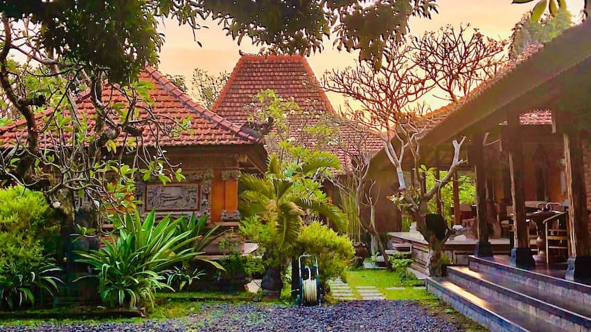 Peace Palace Sanur Bali (Java House)