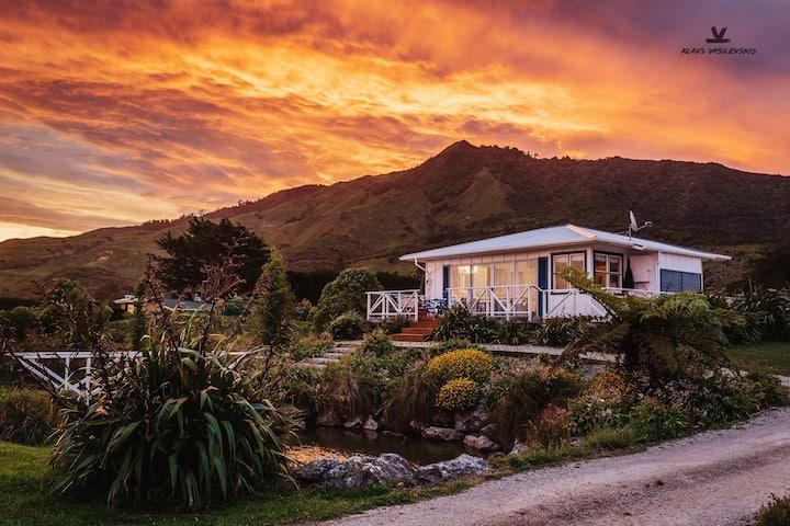 Coastal country cottage w/dark skies (entire home)
