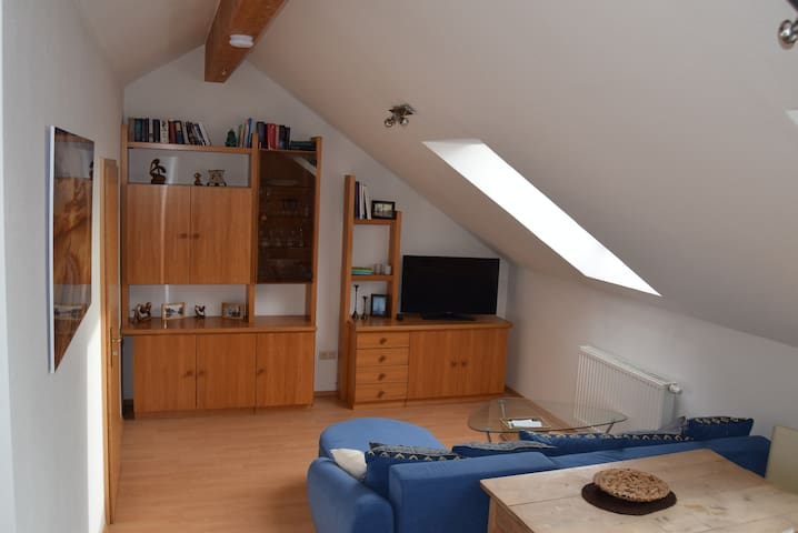 Small top floor apartment in Unterallgäu - Rammingen - Lejlighedskompleks