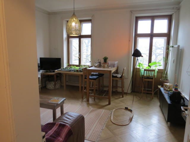 Charming bright flat in vibrant part of Basel