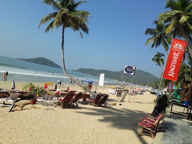 Beach Bliss, Palolem Beach, Goa (7)