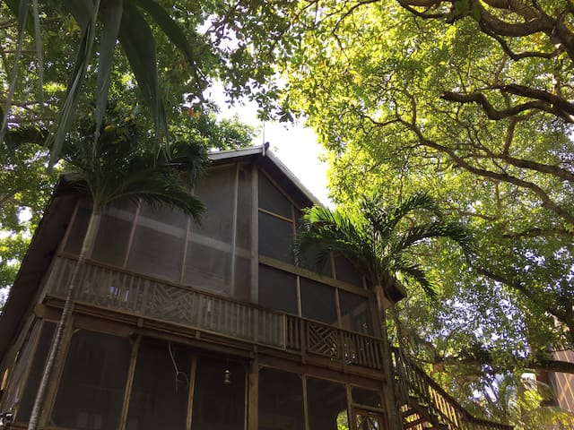 "Sandy Bay ""Seas the Day"" Jungle Paradise Treehouse - Sandy Bay - Condominium"