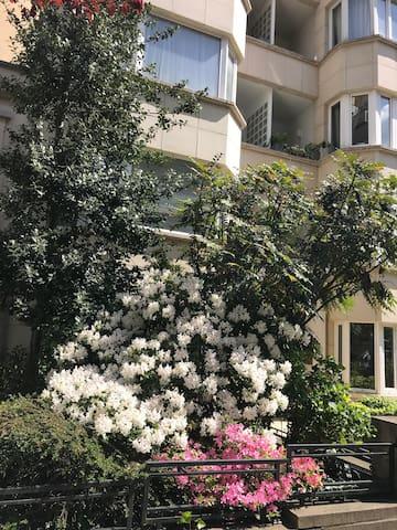 Cosy Apartment. Terrace. Premium location
