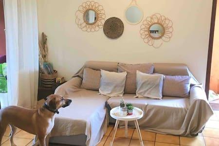 Appartement cosy avec jardin Passamainty