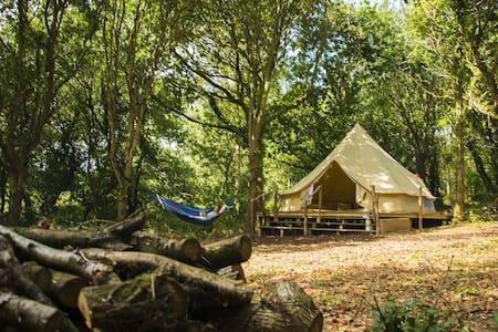 Gabriel - 6m Bell Tent in woodland - Stockleigh Pomeroy