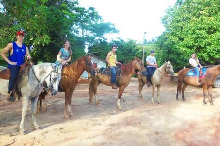 Casa na Fazenda: Experiência da vida no campo