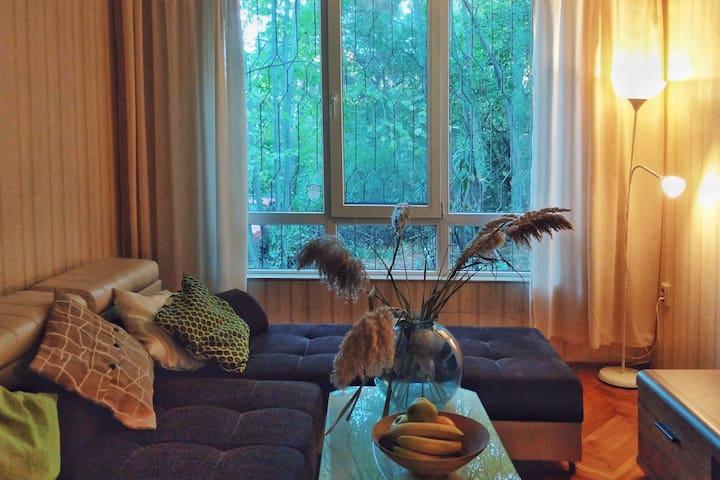 Maria's cozy apartment