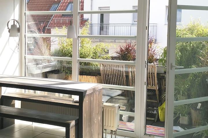 Gemütliche 2 Raumwohnung 48m2 + Balkon zentrumsnah
