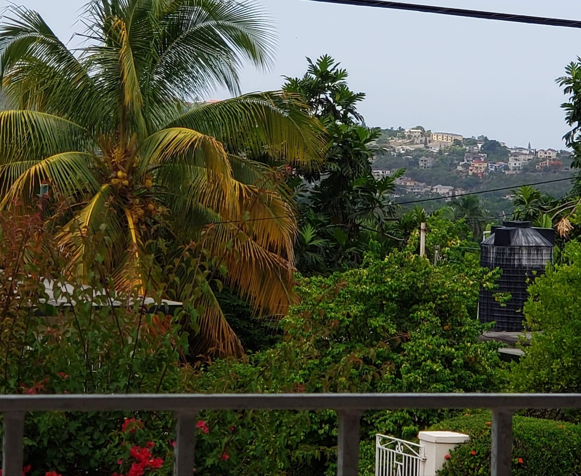 View from the veranda!