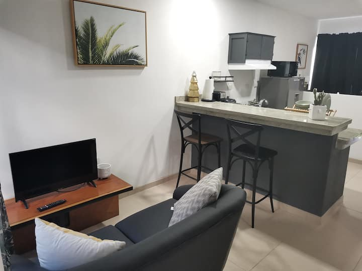 Two Bedrooms Apartment with A/C - La Fortuna #2