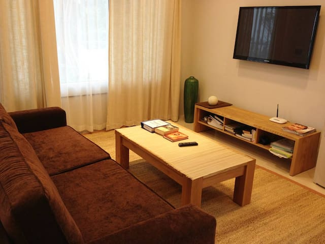 101SH2# 1 bedroom lakeside apartment West Lake - Hanoi - Apartemen